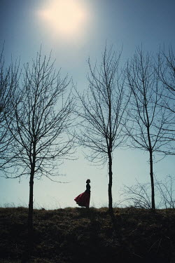 Magdalena Russocka silhouette of historical woman and bare trees on hill