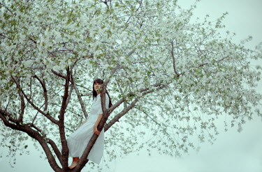 Felicia Simion WOMAN SITTING IN TREE WITH WHITE BLOSSOM Women