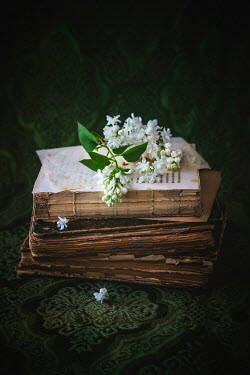 Magdalena Wasiczek WHITE FLOWERS ON PILE OF OLD BOOKS Flowers
