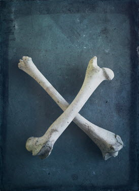 Mark Owen TWO CROSSED BONES Miscellaneous Objects