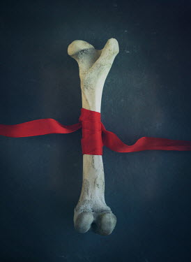 Mark Owen BONE TIED WITH RED SILK RIBBON Miscellaneous Objects
