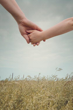 Joanna Czogala PARENT AND CHILD HOLDING HANDS IN FIELD Body Detail