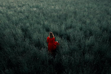 Rekha Garton WOMAN IN RED IN OVERGROWN FIELD Women