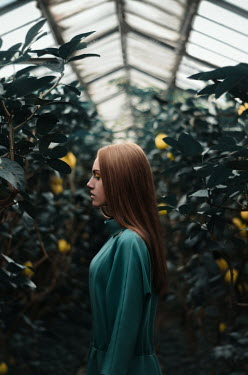 Inna Mosina GIRL WITH RED HAIR IN GREENHOUSE WITH LEMON TREES Women