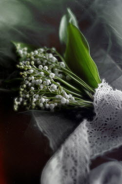 Andreeva Svoboda Bouquet of lily of the valley