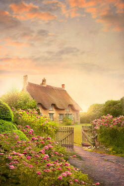 Lee Avison pretty thatched cottage with rose garden at sunset