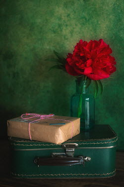 Magdalena Wasiczek SUITCASE PARCEL AND FLOWER IN GLASS VASE Flowers