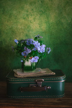 Magdalena Wasiczek SUITCASE LETTERS AND BLUE FLOWERS IN JUG Flowers