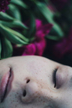 Alina Zhidovinova FACE OF SLEEPING GIRL WITH PURPLE FLOWERS Women