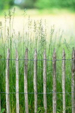 Ysbrand Cosijn Wooden fence and long grass