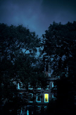 Miguel Sobreira Trees and Victorian terrace house at night