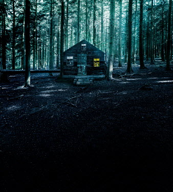 Stephen Mulcahey a small cabin in the woods