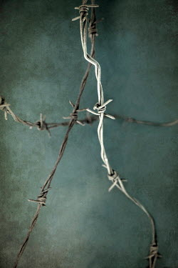 Jaroslaw Blaminsky TWISTED BARBED WIRE Miscellaneous Objects