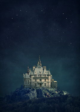 Elena Schweitzer PALACE ON ROCKS WITH STARRY SKY Houses
