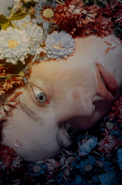 Michelle De Rose FEMALE FACE LYING WITH FLOWERS Women
