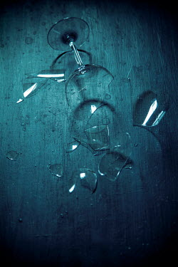 Miguel Sobreira PIECES OF BROKEN GLASS LYING ON FLOOR Miscellaneous Objects