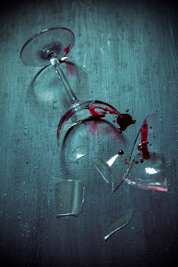 Miguel Sobreira BROKEN GLASS WITH BLOOD LYING ON FLOOR Miscellaneous Objects