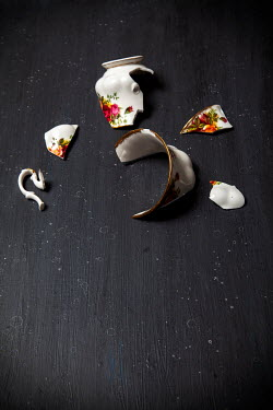 Miguel Sobreira PIECES OF BROKEN FLORAL TEACUP Miscellaneous Objects