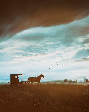 Sandra Cunningham MAN IN HORSE AND CARRIAGE IN STORMY FARMLAND Men