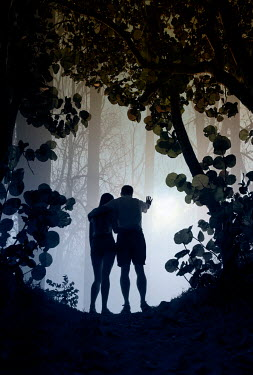 Terry Bidgood SILHOUETTED COUPLE IN FOREST WITH BRIGHT SUNLIGHT Couples