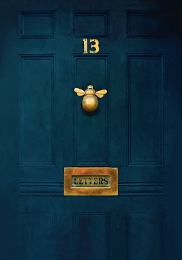 Lyn Randle Blue door with bee knocker