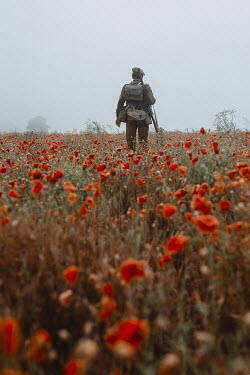 Shelley Richmond Second World War British soldier in poppy field