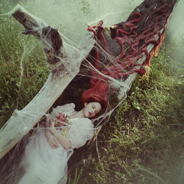 Anya Anti Young woman with long red hair sleeping under fallen tree with spider webs
