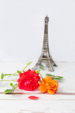 Magdalena Wasiczek MINIATURE EIFFEL TOWER WITH ROSES ON TABLE Flowers
