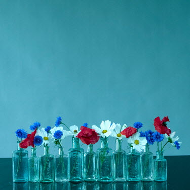 Liz Dalziel Flowers in glass bottles