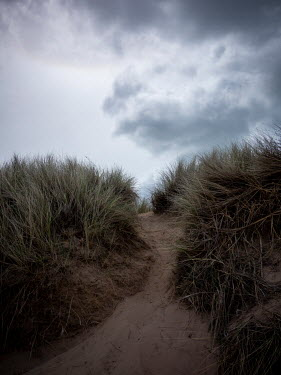 David Baker SAND DUNES WITH PATHWAY AND STORMY SKY Seascapes/Beaches