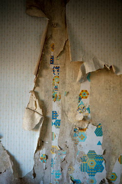 David Baker LAYERS OF PEELING WALLPAPER IN OLD HOUSE Building Detail
