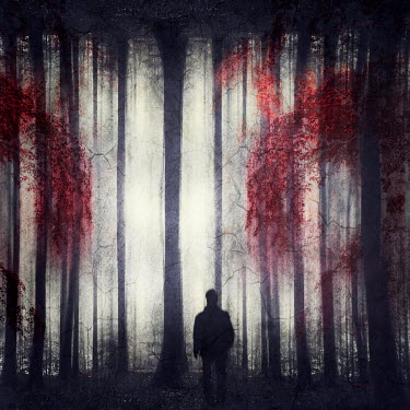 Dirk Wustenhagen SILHOUETTED MAN IN SINISTER FOREST Men