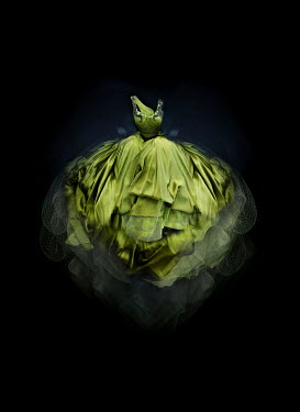 Meg Cowell FLOATING GREEN GOWN IN SHADOW Miscellaneous Objects