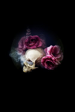 Meg Cowell SKULL WITH PINK FLOWERS AND SMOKE Flowers