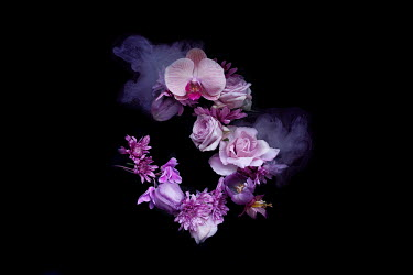 Meg Cowell PINK AND PURPLE FLOWERS WITH SMOKE Flowers