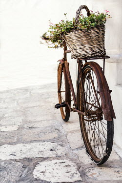 Paolo Martinez OLD RUSTY BIKE WITH BASKET OF FLOWERS Miscellaneous Transport