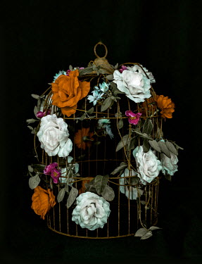 Marko Nadj EMPTY BIRDCAGE COVERED WITH ROSES Flowers