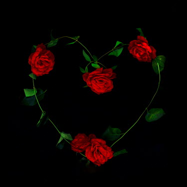 Marko Nadj RED ROSES IN SHAPE OF HEART Flowers