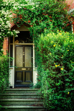 Evelina Kremsdorf DOORWAY OF HOUSE WITH BUSHES AND FLOWERS Houses