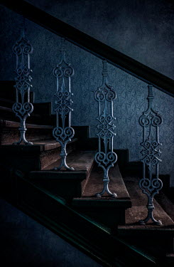 Jaroslaw Blaminsky SILVERY ORNATE STAIRCASE IN SHADOW Stairs/Steps