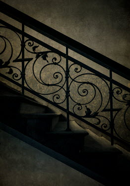 Jaroslaw Blaminsky STEPS WITH DECORATIVE WROUGHT IRON IN SHADOW Stairs/Steps