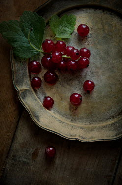 Jaroslaw Blaminsky REDCURRANTS ON OLD PLATE FROM ABOVE Miscellaneous Objects