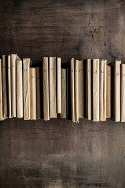 Paolo Martinez LINE OF OLD LEDGERS ON WOODEN TABLE Miscellaneous Objects
