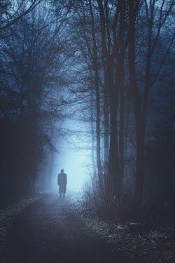 Dirk Wustenhagen SILHOUETTED MAN IN FOGGY COUNTRY ROAD Men