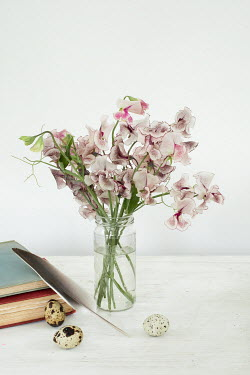 Matilda Delves FLOWERS EGGS FEATHER AND BOOKS INDOORS Flowers
