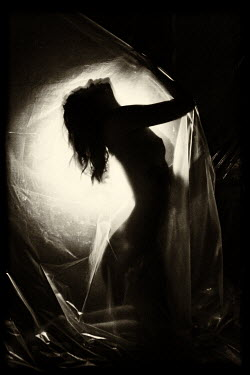 Ekaterina Pavlova SILHOUETTED NAKED WOMAN COVERED BY SILK SHEET Women
