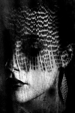 Liz Dalziel FEMALE FACE WITH EARRINGS AND PATTERNED SHADOWS Women