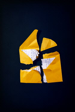 Miguel Sobreira PIECES OF TORN LETTER AND YELLOW ENVELOPE Miscellaneous Objects