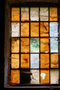 Elly De Vries OLD WINDOW INDOORS WITH COBWEBS Building Detail