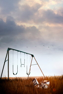 Sandra Cunningham SWINGS IN FIELD WITH SNEAKERS Miscellaneous Objects